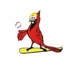 Yorkton Cardinals
